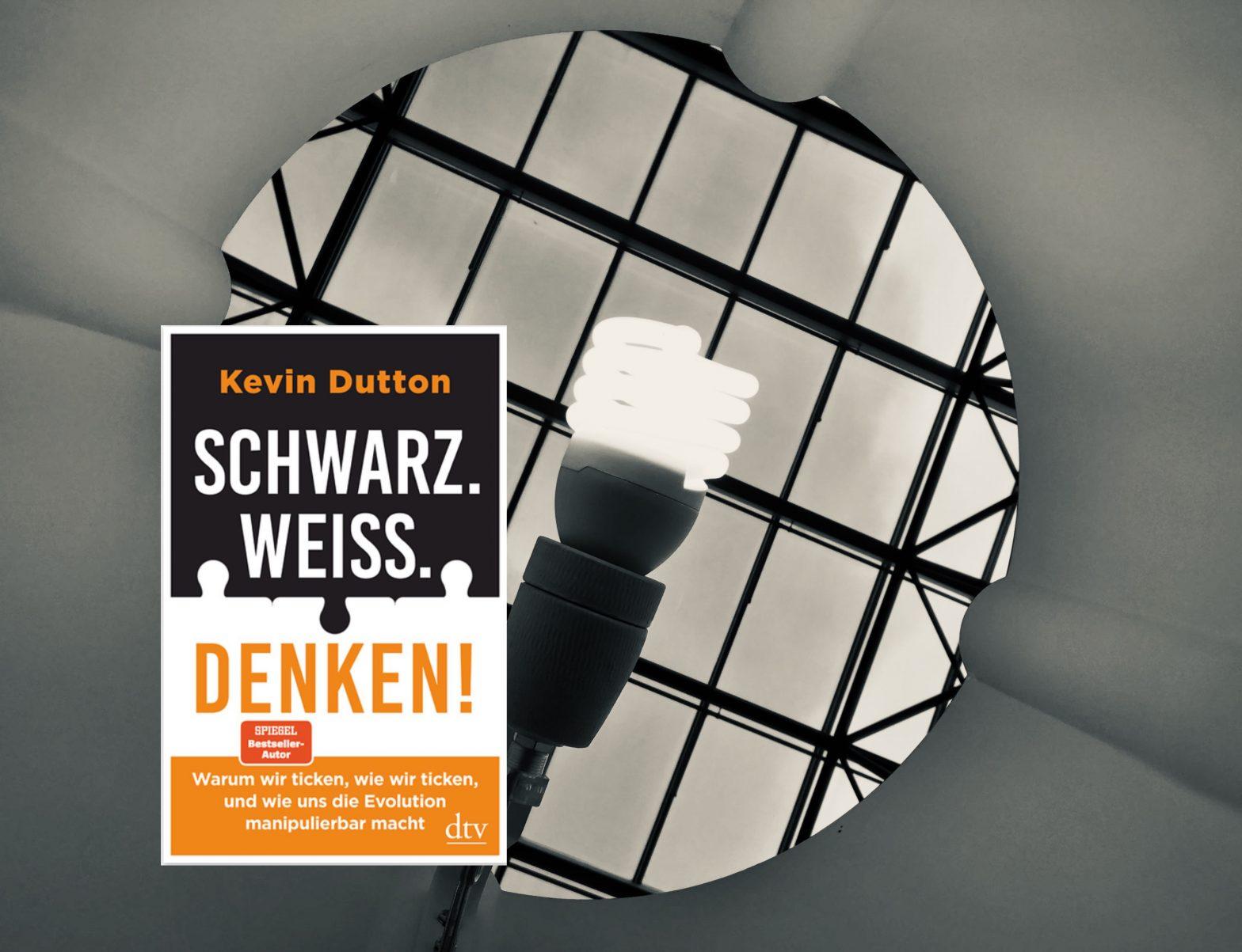 SCHWARZ. WEISS. DENKEN! von Kevin Dutton: Collage Cover mit Lampe